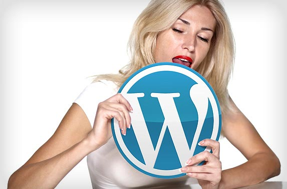 WordPress Theme Designer
